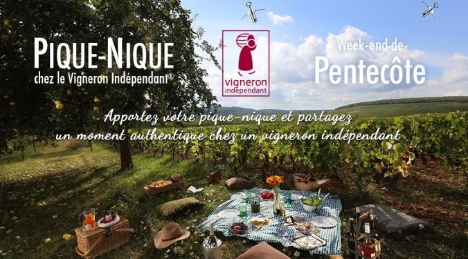 Pique nique Vigneron independant