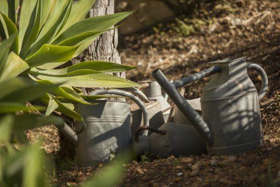 Jardiner à Flaugergues